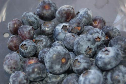 blueberrie2