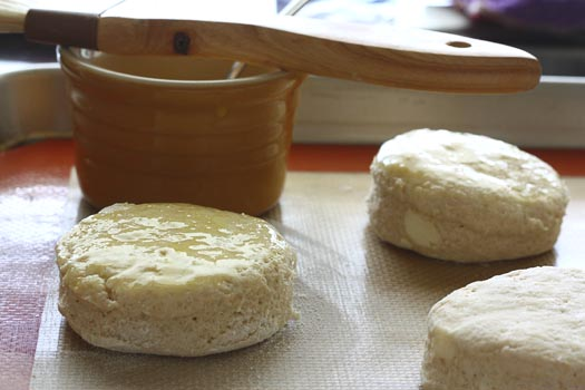 whole wheat buttermilk biscuits a cozy kitchen