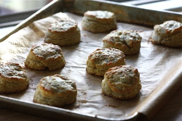 brown butter buttermilk biscuits a cozy kitchen