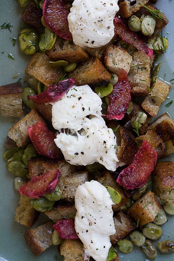 Fava Bean Panzanella Salad with Burrata
