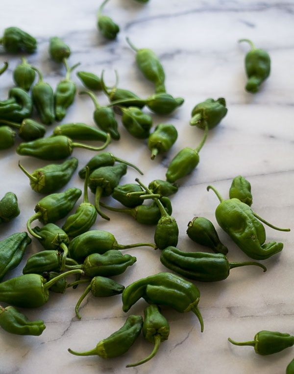 Padron Peppers with Bonito Flakes and Orange Zest // www.acozykitchen.com