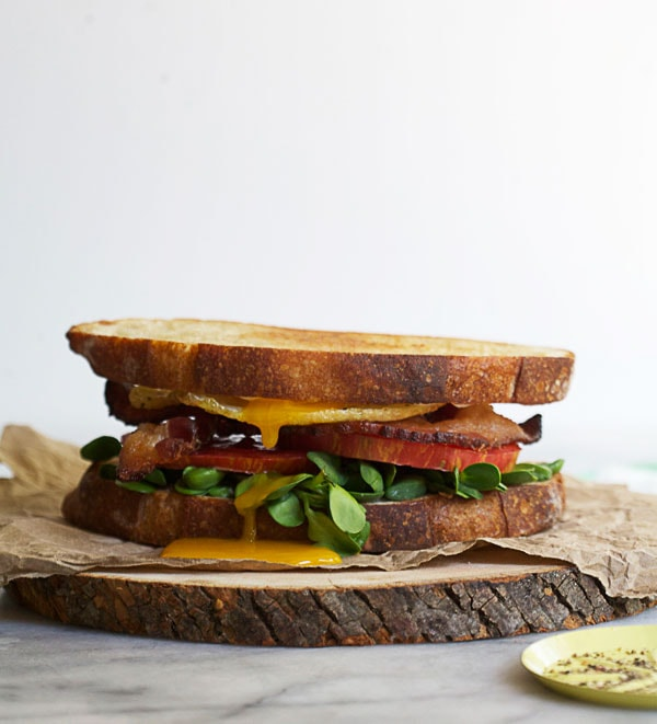 How to Make a Fancy-Ass BLT // www.acozykitchen.com