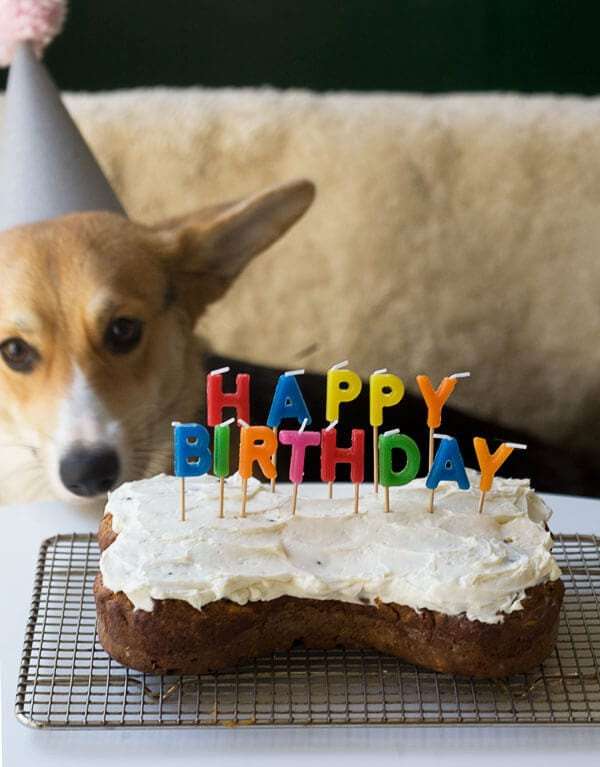 Amazing Dog Birthday Cake Grain Free And Full Of Carrots A Cozy Kitchen Personalised Birthday Cards Veneteletsinfo