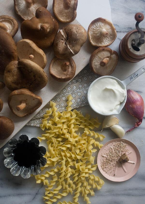 Mushroom Stroganoff // www.acozykitchen.com
