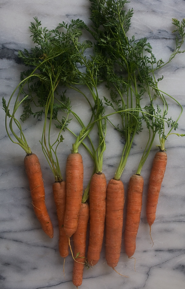 Roasted Ras El Hanout Carrots with Carrot-Top Pesto // www.acozykitchen.com