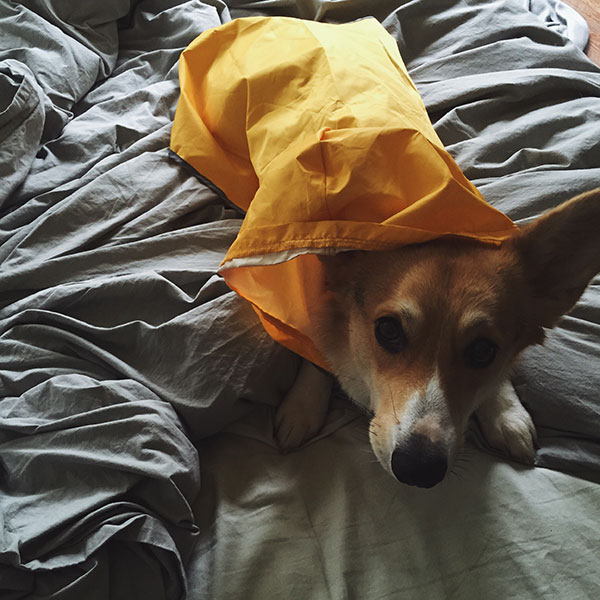 RainCoatSad