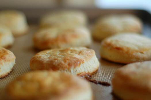 classic buttermilk biscuits a cozy kitchen