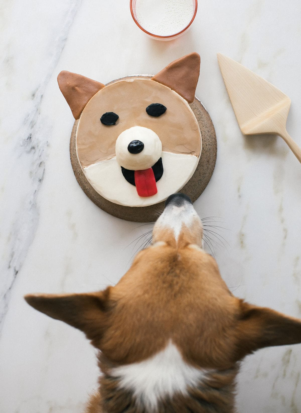 How To Make A Corgi Cake And A Pug Cake Too A Cozy