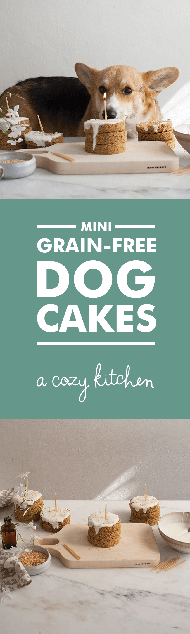 Grain Free Dog Birthday Cake Recipes