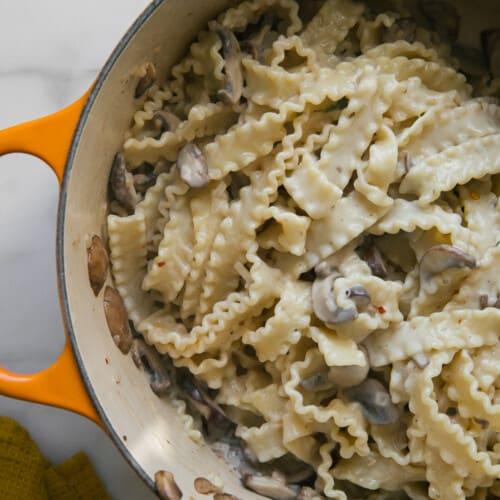 Overhead creamy mushroom pasta